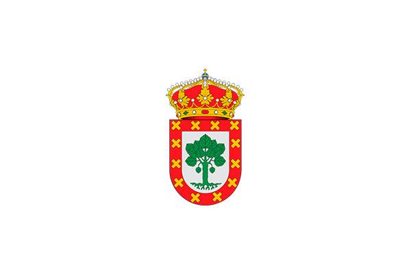 Consistorio de Baleira