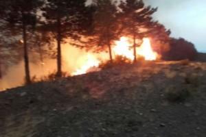 El uso de una desbrozadora causó un incendio en Verín