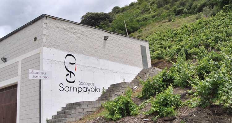Bodegas Sampayolo: ejemplo de internacionalización