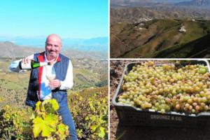 Botani se sitúa entre los mejores blancos del mundo de menos de veinte dólares siendo el único vino español
