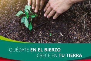 El proyecto de creación de una empresa de economía social en el sector agrícola atrae a 20 futuros emprendedores bercianos y espera nuevas adhesiones