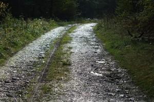 Tres millones de euros para la mejora de los caminos de acceso a parcelas agrarias en ayuntamientos lucenses