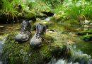 Campaña de crowdfundig en Casaio para un proyecto de ecoturismo y desarrollo local