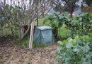 Cincuenta composteiros gratuítos para as familias de Sober