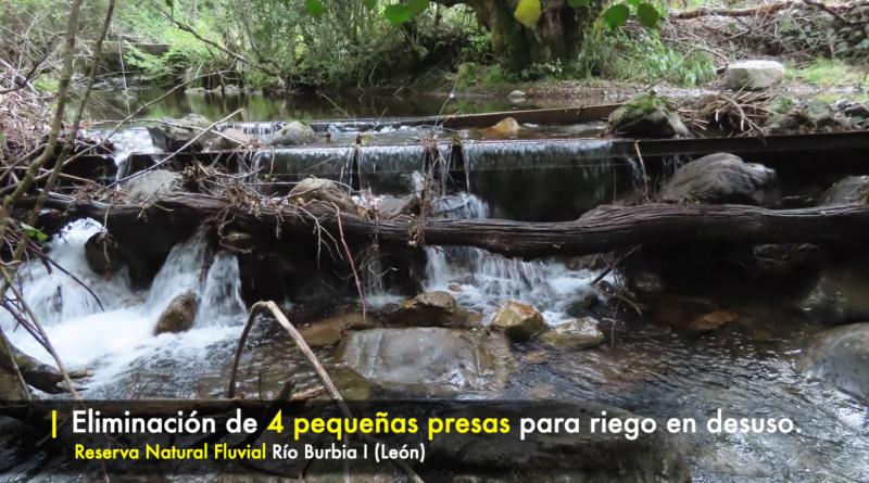 Actuaciones ejecutadas 2020 en la protección y mejora de zonas fluviales de alto valor ecológico