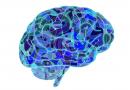 """""""Pódese previr o dano cerebral?"""", charla en Monforte"""