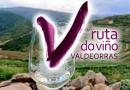 El vino como eje para descubrir una maravillosa comarca
